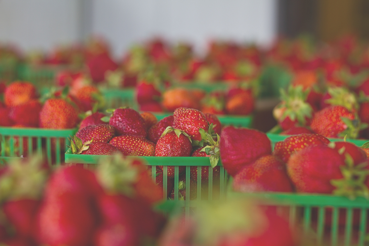 strawberries_unsplash_13-06-15.jpg