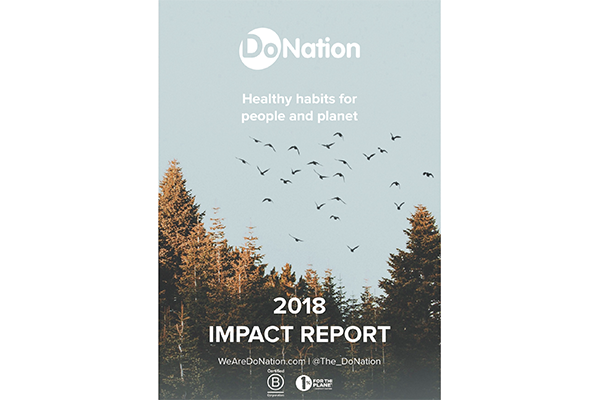 Do Nation 2018 Impact Report front page landscape.png